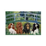 Bridge &amp; 4 Cavaliers Rectangle Magnet