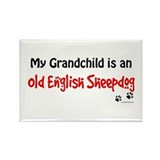 OES Grandchild Rectangle Magnet