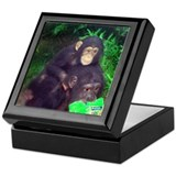 Piggyback Chimp Keepsake Box
