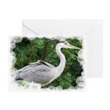 Grey Heron Greeting Cards