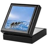 Iditarod Dog Sled Team Keepsake Gift Box
