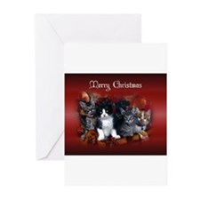 Unique Kitten Greeting Cards (Pk of 20)