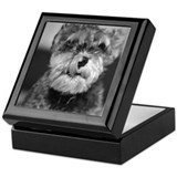 Miniature Schnauzer Keepsake Box