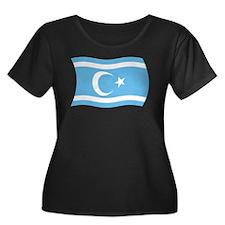 Iraqi Turkmen Flag 2 T