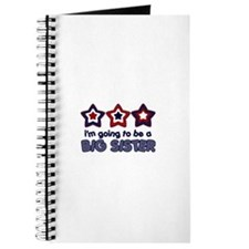 4th of July big Sister Journal