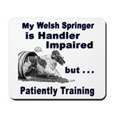 Welsh Springer Spaniel Agilit Mousepad