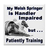 Welsh Springer Spaniel Agilit Tile Coaster