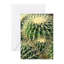 Barrel cactus - Blank greeting card (6/pkg)