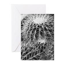 B&W barrel cactus - Blank greeting cards (6/pkg)