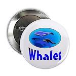Whales Button (100 pk)
