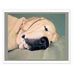 Yellow Labrador Dog Sleeps Small Poster