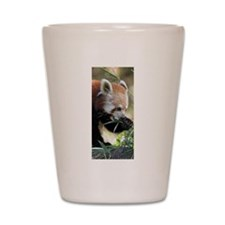 Red Panda 002 Shot Glass