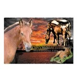 Cute Walkaloosa Postcards (Package of 8)