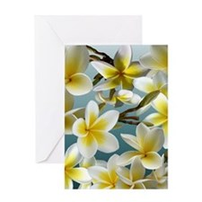 Plumeria on Blue Greeting Cards