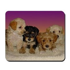 Yorkiepoo puppies mousepad