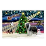 Xmas Magic & Beardie Postcards (Package of 8)