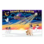 XmasSunrise/Shar Pei 5 Postcards (Package of 8)
