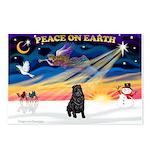 XmasSunrise/Shar Pei Postcards (Package of 8)