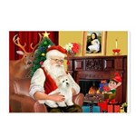 Santa's Coton Postcards (Package of 8)