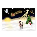 Night Flight/Fox Terrier 5 Postcards (Package of 8