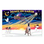 XmasSunrise/Great Dane Postcards (Package of 8)