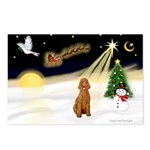 Night Flight/Apricot Poodle ( Postcards (Package o