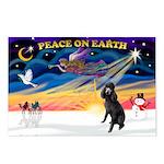 XmasSunrise/Std Poodle Postcards (Package of 8)