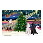 XmasMagic/ 2 Std Poodles Postcards (Package of 8)