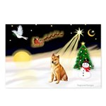 Night Flight/Shiba Inu Postcards (Package of 8)
