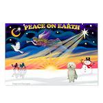 XmasStar/Sib Husky Postcards (Package of 8)