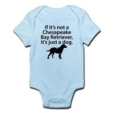 If Its Not A Chesapeake Bay Retriever Body Suit