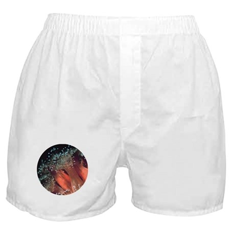 Strawberry Anemone Boxer Shorts