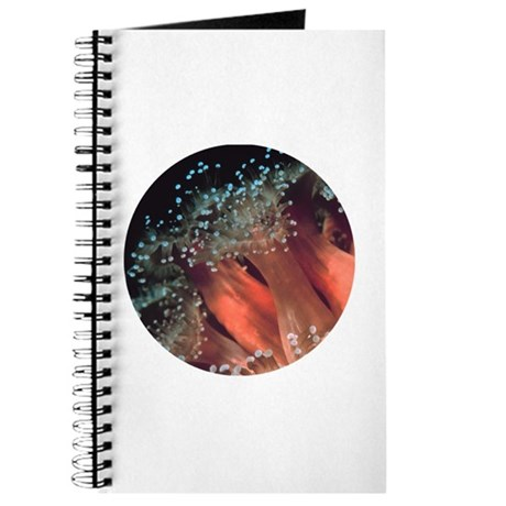 Strawberry Anemone Journal
