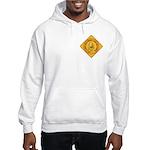 I Love Grandma & Grandpa Hooded Sweatshirt