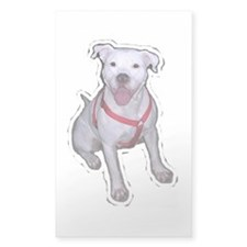 """Gracie"" Rectangle Decal"