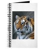 Portrait of a Tiger Journal