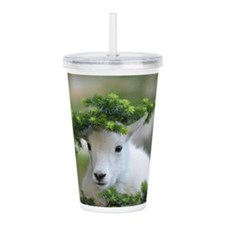 Kute Kid Mountain Goat Acrylic Double-wall Tumbler