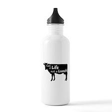 Cute Cruelty free Water Bottle