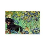 Irises & Dachshund (BT4) Rectangle Magnet (10 pack
