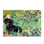 Irises & Dachshund (BT4) Postcards (Package of 8)