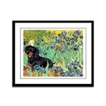 Irises & Dachshund (BT4) Framed Panel Print