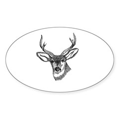 Whitetail Deer Oval Sticker