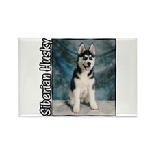 Siberian Husky Puppy Rectangle Magnet (10 pack)