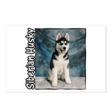 Siberian Husky Puppy Postcards (Package of 8)