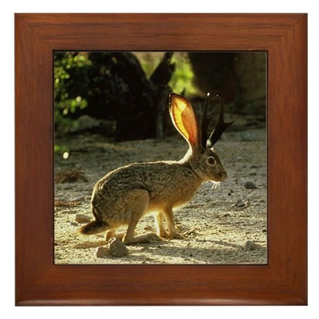 Texas Jackolope Framed Tile