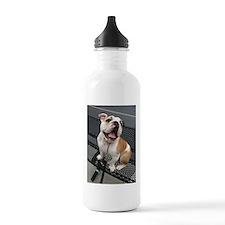 Bulldog Smile Water Bottle