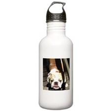 Cute Pet bulldog Water Bottle