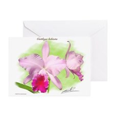 Cattleya Greeting Cards (Pk of 10)