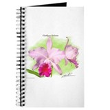 Cute Cattleya Journal