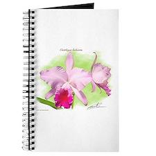 Cattleya Journal